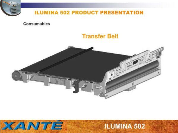 Ilumina Belt, 1 Stück