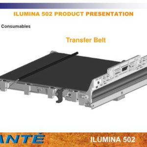 Ilumina HWC Belt, 1 Stück